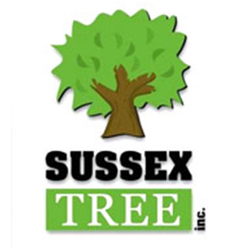 sussex_tree